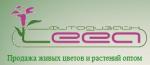 Компания ООО «Лея-Инвест»